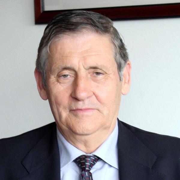 Alcides Martins